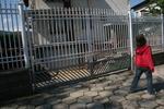 портална врата от ковано желязо