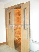 двустворчатые противопожарные двери